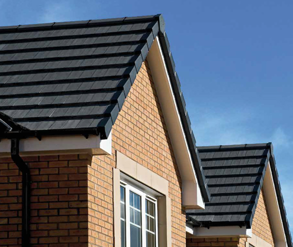 homeowners-roofline